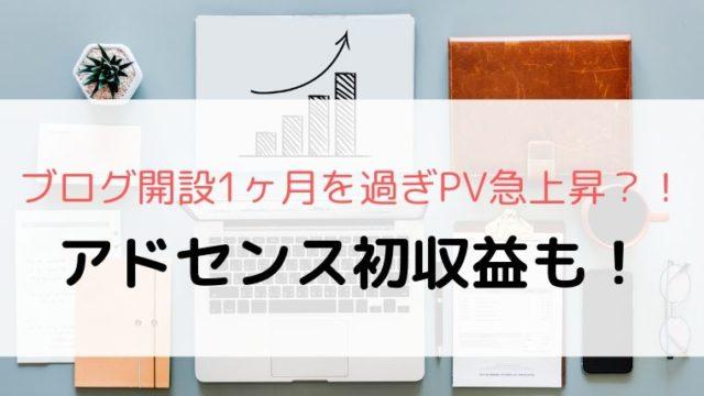 PV急上昇とアドセンス初収益